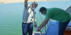 Siirt'te kafes balık yetiştiriciliği için çalışmalar başladı