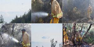 Adana Sarıçam'da ormanlık alanda yangın