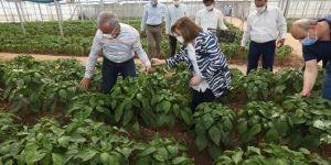 """Gaziantep'te """"Tarımsal Eğitim ve Yöresel Ürünler İşleme Merkezi"""" hizmete girdi"""