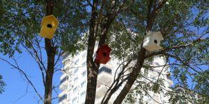 Gaziantep'te parklarda kuşlar için yuva yapıldı