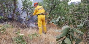Lice kırsalında orman yangını