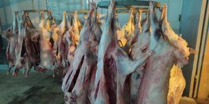 Diyanet Vakfı Bitlis'te 3 bin aileye kurban eti dağıttı