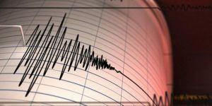 A 4.5-magnitude earthquake jolts southern Iran