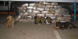 Diyarbakır'da 6 ayda bin 995 kişi yakalandı