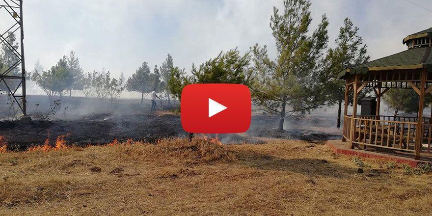 Batman Kıre Dağında piknikçilerin mangalı yangına neden oldu