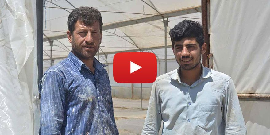 Çiftçilerden tarımda görülen hastalıklara çözüm